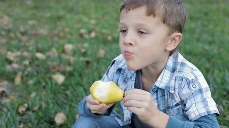 Happy little boy eating apple in the garden at the day time. Concept of healthy food.