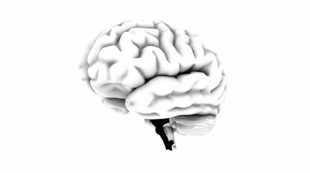 umysł : Brain 1002: Stock video of a human brain rotating on a white background (Loop).