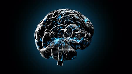 Brainstorm 101: Stock video of a rotating human brain electrically charged with thought (Loop).