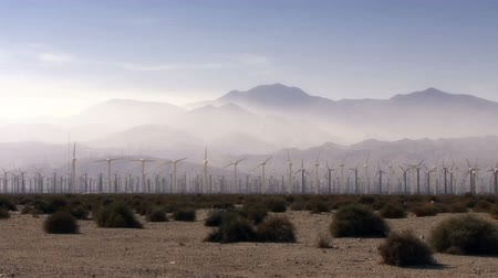 Wind Power 0101: Hundreds of windmills turn in the misted California desert. Stok Video