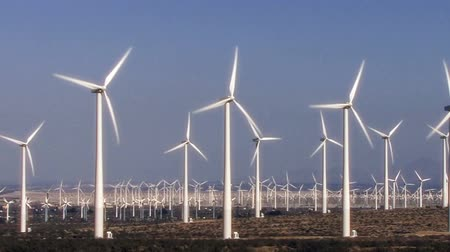 Wind Power 0103: Hundreds of windmills turn in the California desert. Stok Video