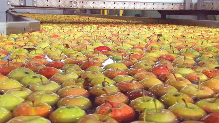 paketleme : sorting apples
