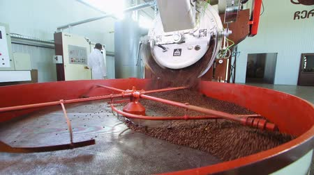 coffee grounds : Close up roasted coffee beans being turned & stirred in industrial machine
