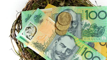 exemption : Australian currency investment close u  with hundred dollar bills and gold coins in nest.