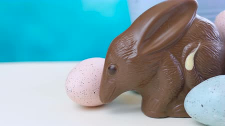 vasárnap : Australian milk chocolate Bilby Easter egg with eggs in nest against a blue and white background, dolly macro.
