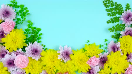 vasárnap : Easter springtime overhead flat lay display of fresh flowers on blue wood table backgound, timelapse.