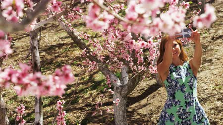 selfie girl : slow motion of girl taking selfies in pink blossoms