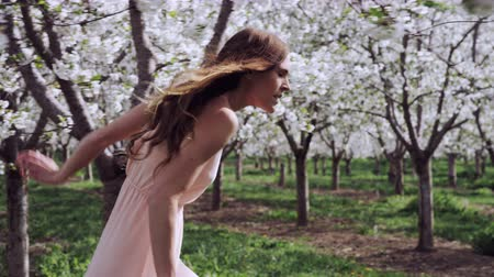 morele : slow motion girl walking through orchard of white cherry blossoms Wideo