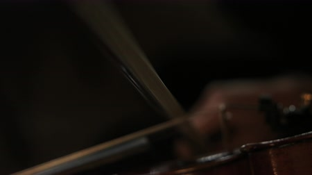 houslista : bow of violin making contact with strings