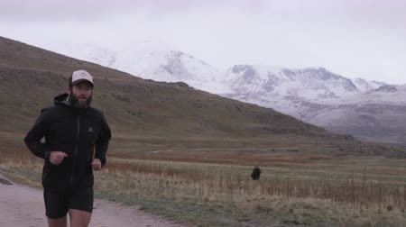 single runner runs down trail past buffalo at Antelope Island in Utah