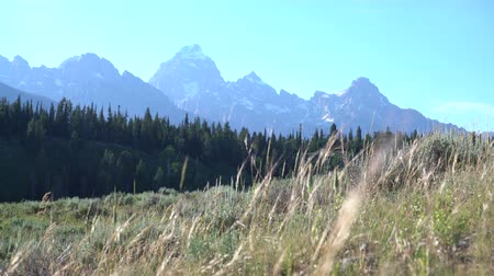 native american culture : landscape of the Grand Tetons in summer