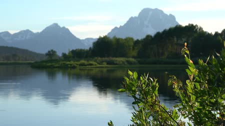 wspinaczka górska : landscape of the Grand Tetons in summer
