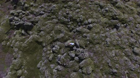 hardened lava : drone shot of woman laying in moss field in Iceland