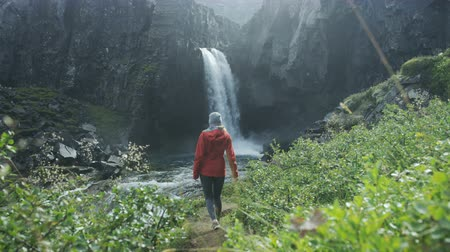 zadnice : woman walking towards waterfall in Iceland