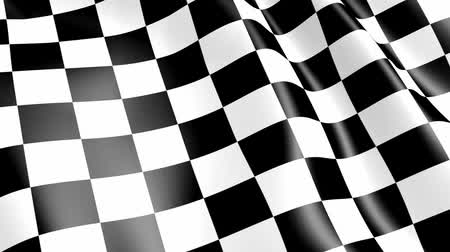 bandeira : race checkered flag