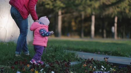 step : Mother and little daughter walking in the park. Stock Footage