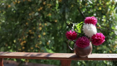 terracota : Flowers in a jug outdoors