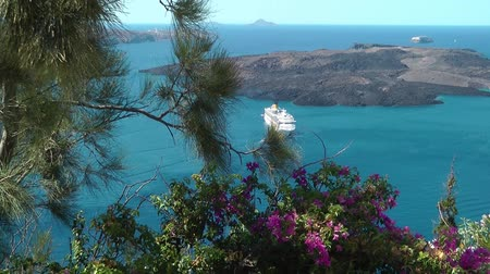Flowers and ship in background - Santorini