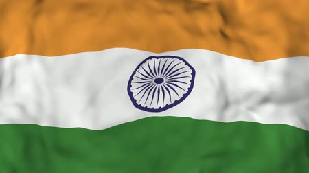 pétala : 4k Realistic 3D detailed slow motion Indian flag in the wind, waving Indian Flag Background, Vídeos