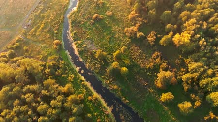 Aerial View. Flying over the beautiful River and beautiful forest.