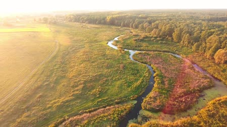 sunrise light : Aerial View. Flying over the beautiful River and beautiful forest.