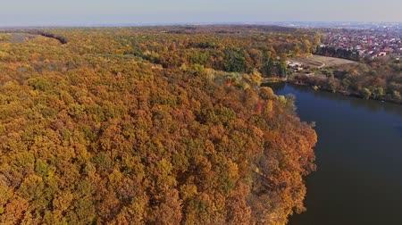 View from the top to the autumn forest and the river Stock Footage