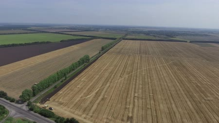 tiller : Video Footage aerial view combines harvesting, top view