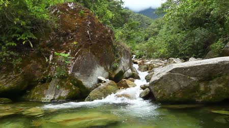agua : River flowing through the Ecuadorian rainforest, Ruta de las cascadas, Banos de Agua Santa