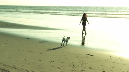 cauda : Adult woman walking on the beach at sunset with dog