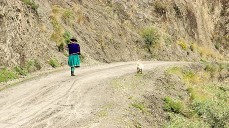 bennszülött : Quechua peasant woman with dog on unpaved countryside road