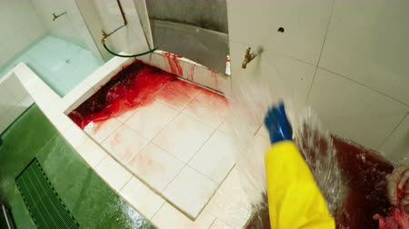 specialties : Disgusting first person view from butcher perspective of animal internal organs in abattoir cleaning room