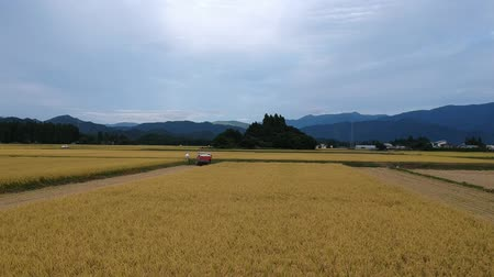 sponka : Aerial view of Rice harvesting in Japan Dostupné videozáznamy