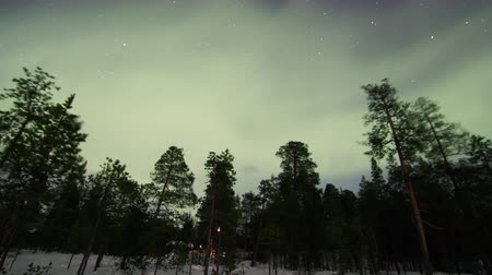 phenomen : Northern lights above frozen country above arctic in Finland Stock Footage
