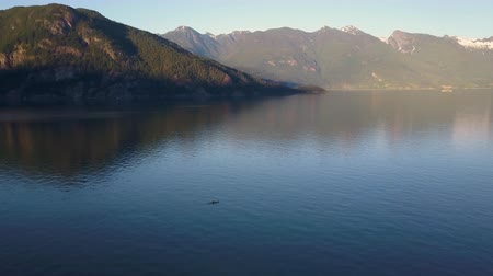 kano : Aerial shot of kayak paddling on lake in mountains while sunset light Stok Video