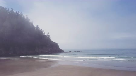atmosféra : Moody atmospheric aerial shot above Oregon coast with beach and cliffs
