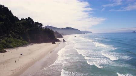 приморский : Aerial shot of beach on Oregon coast with cliffs and ocean waves Стоковые видеозаписи
