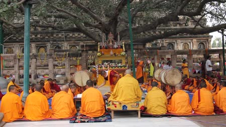 szerzetes : ceremony under the bodhi tree at Mahabodhi temple, Bodhgaya, India. Tibetan monks are celebbrating a ceremony beneath the bodhi tree, under which the buddha became enlightened. They are chanting and holding up their drums. Stock mozgókép