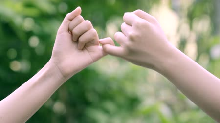 hands hook each others little finger on nature background, concept of promise