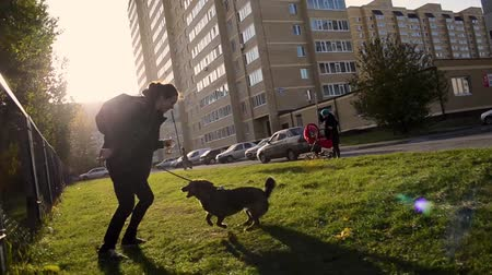 köpekler : young woman plays with dog in the courtyard of multi-storey buildings