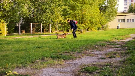 young woman runs with a dog on a leash in the park and plays