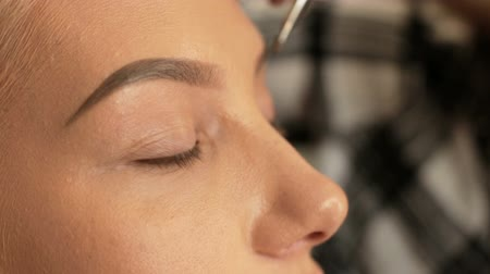 Beauty saloon. Makeup artist paints eyebrows with a brush. Blonde woman Close-up Stock mozgókép