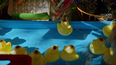 ducky : toy ducks floating on the