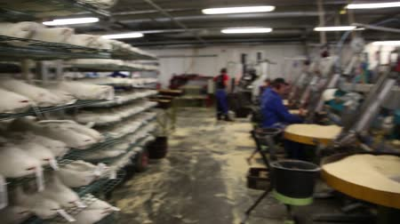 skins : Factory for the production of natural fur. Stock Footage