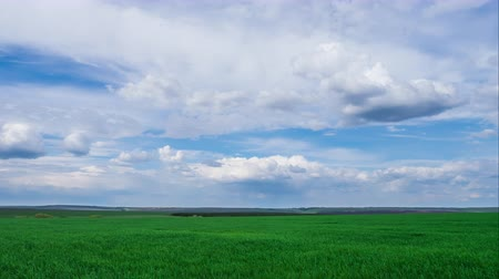 mavi gök : green field and cloudy sky beautiful clouds floating over green bright sky beautiful landscape, timelapse expressive freedom serenity sky beautiful clouds, bright juicy green grass