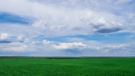 yeşil çimen : green field and cloudy sky beautiful clouds floating over green bright sky beautiful landscape, timelapse expressive freedom serenity sky beautiful clouds, bright juicy green grass