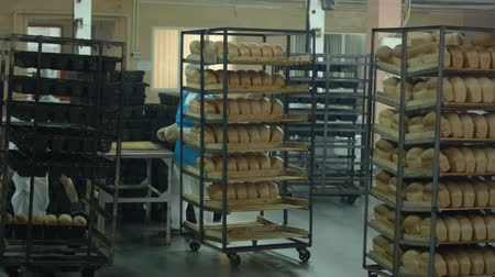 bakery : manufacture of bread products in the shop