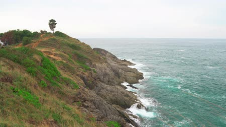 Rocky shoreline along the open ocean. The waves break on a cliff covered with green plants