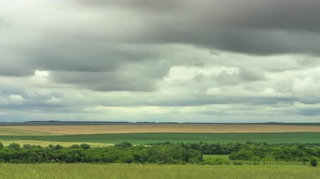 raça : timelapse field with clouds, storm clouds, farmland pasture