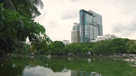 ohnutý : A large lake in the city Park at downtown skyscrapers background. Green branches of palms and trees bent low to the water Dostupné videozáznamy