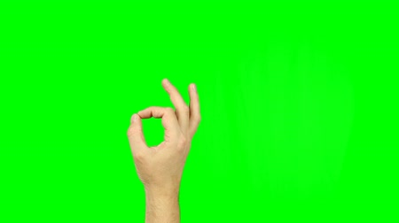 preguiça : OK sign fingers gesture on green screen. Simbol of approval, agreement, or that all is well. Thumb and index fingers into a circle sign. Footage contains solid green instead alpha channel easy keying.